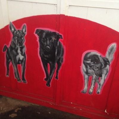 China House Dog Graffiti